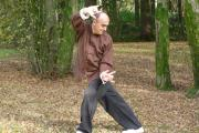 Stage de QI GONG